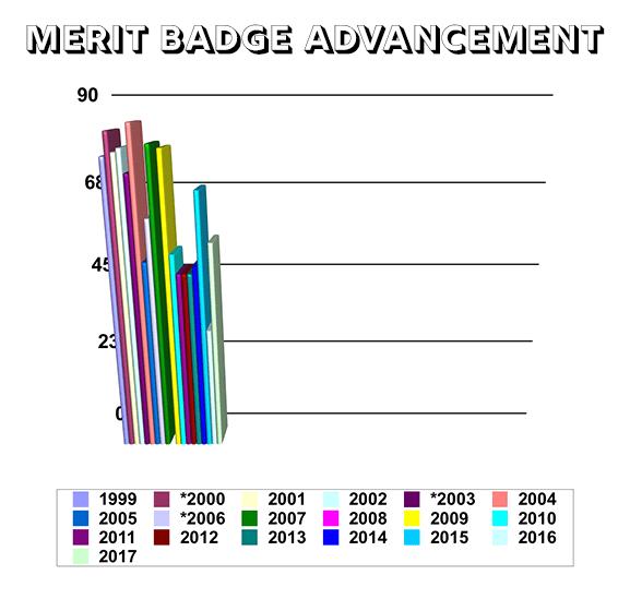 Troop 334 Merit Badge Advancement