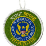 ScoutSTRONG Patch