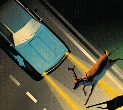 Survive This Highway Accident