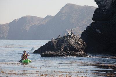 Kayaking Catalina Island Emerald Bay Exploring