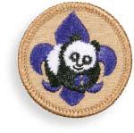 Boy Scout Image – World Conservation