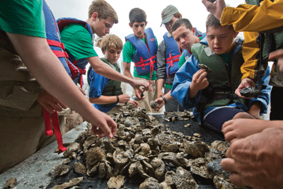 Chesapeake Bay Troop 99 Oyster