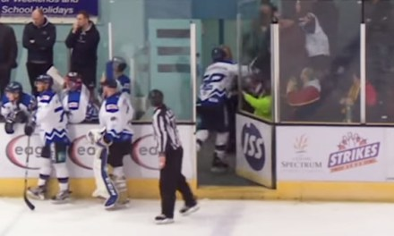 EIHL's Nickerson Suspended 20 Games for Punching Fan, Abuse of Officials