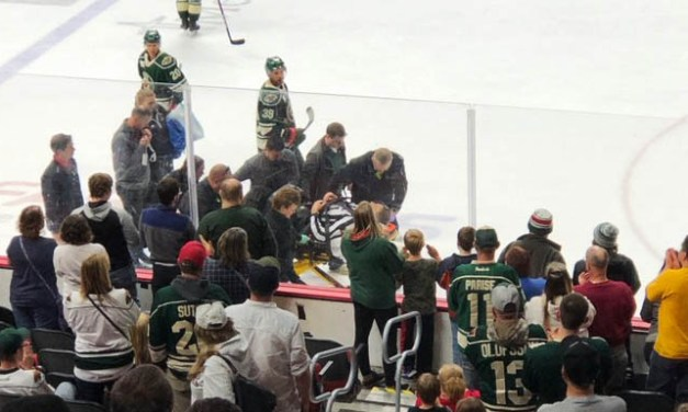 AHL Linesman Stagnone Injured