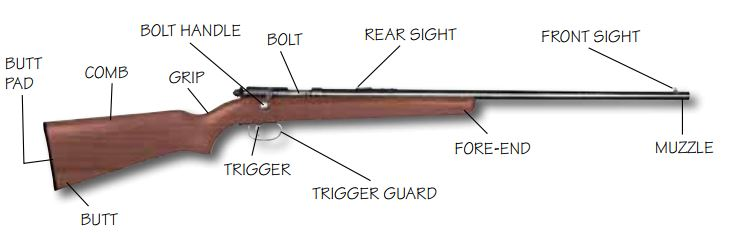 Parts of Rifle