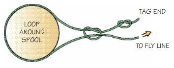 arbor knot