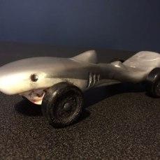 Sleek Shark
