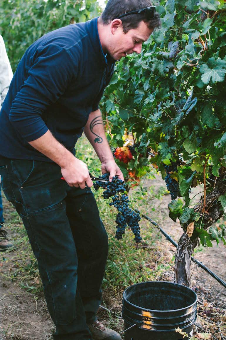 Graham Pierce (winemaker) blackhillsteampics2014-2