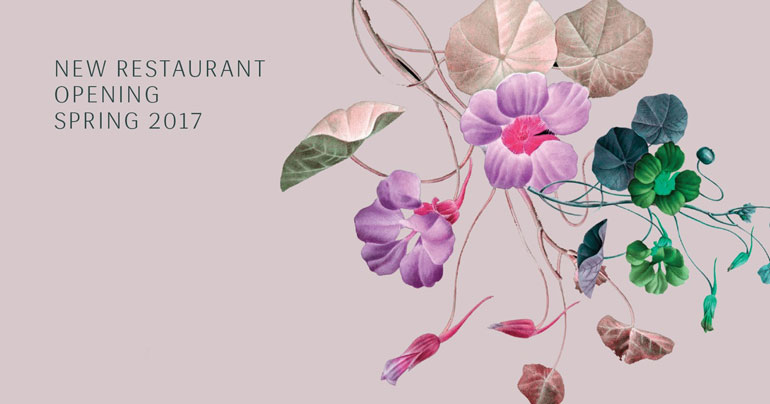 New-Restaurant-Opening---Banner