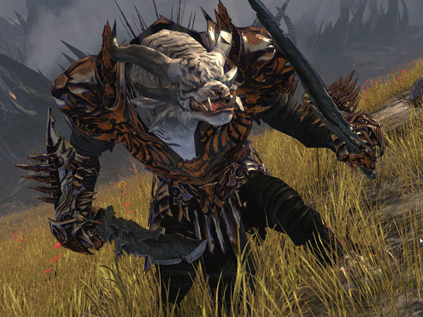 warrior guide gw2