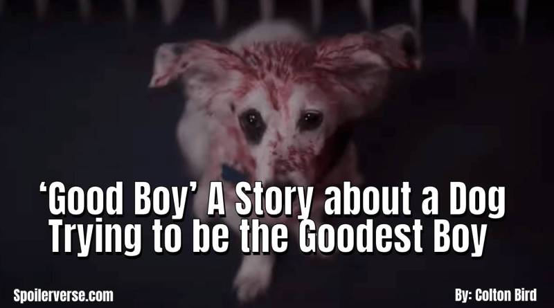 'Good Boy' A Story about a Dog Trying to be the Goodest Boy