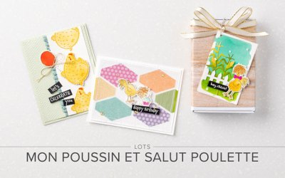 Lots Mon Poussin et Salut Poulette
