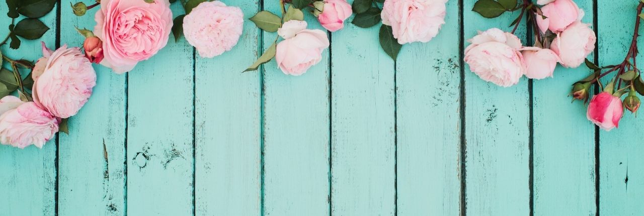 pink roses against teal wooden flooring