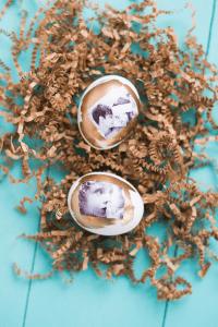 Tutorial - Photo Transfer Easter Eggs