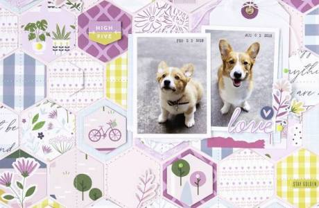 Hexagon Dog Scrapbook Page