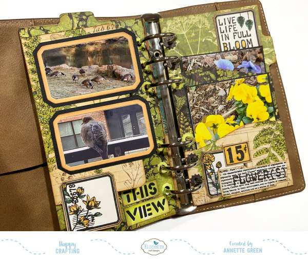 Nature Traveler's Notebook