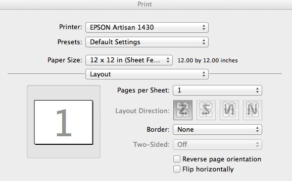 epson 1430 print layout settings