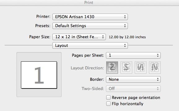 epson 1430 print layout settings