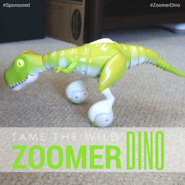 Zoomer Dino is a robotic dinosaur toy named Boomer that starts out as a wild beast. You have to learn to tame the wild beast and try to control him.