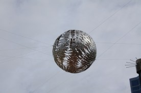 Ferns(Ball)