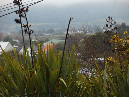 Upper Hutt from top of hill where I live