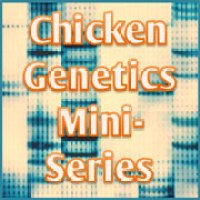 Genetics Mini-Series