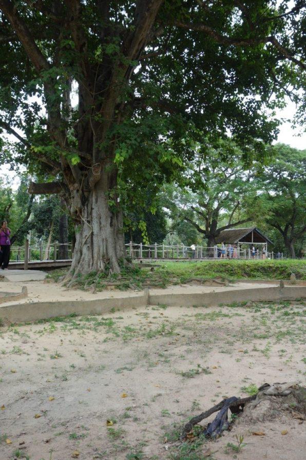 Cambodja Phnom Penh Killing Fields