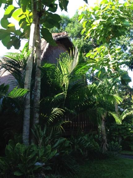 Nusa Lembongan Alam Nusa 2