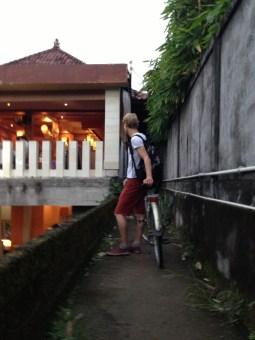 Route Indonesie Ubud rijstvelden fietstocht