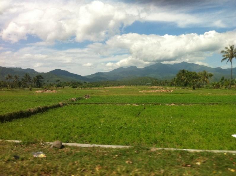 Lombok nature 5