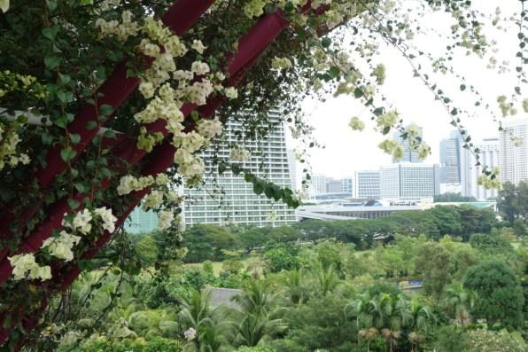 Singapore Skytree 4