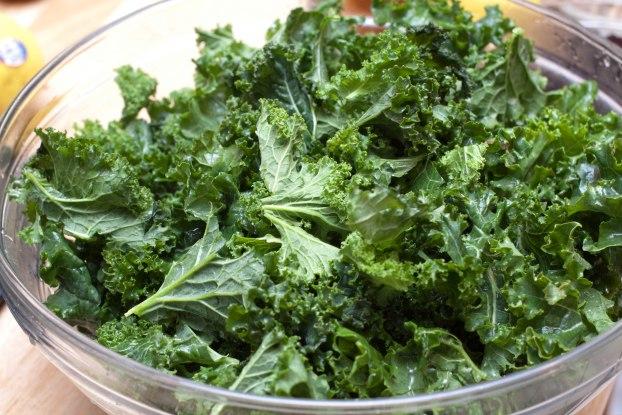 Cranberry Walnut Kale Salad