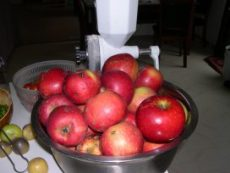 Husband picked our backyard apples yesterday.