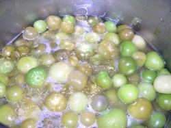Last of our tomatillos cooking for Salsa