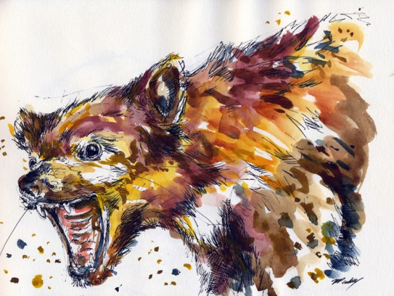 Tasmanian Devil - drawn with a micron pigma pen and painted with watercolours
