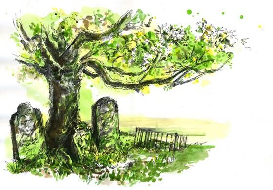 ststephens_cemetery_01_LR