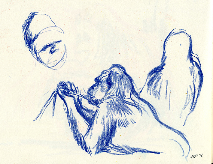 Gorilla - chinagraph