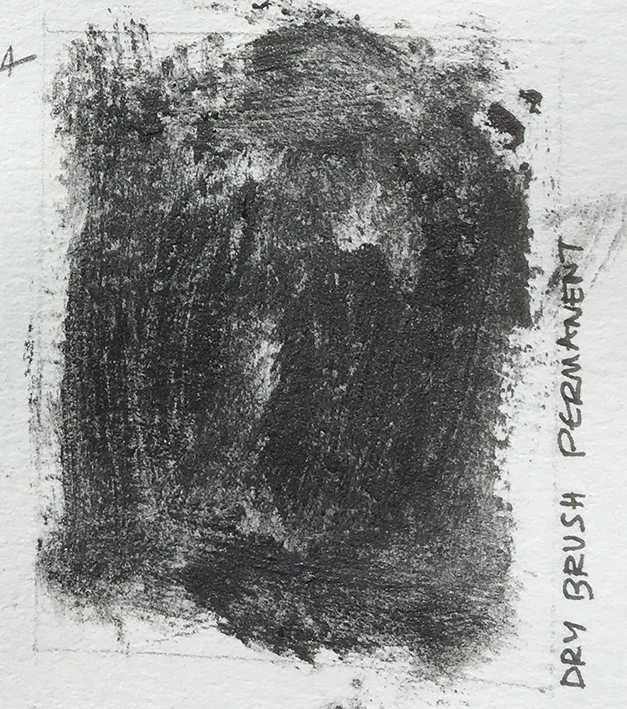 Day1_permanent_dry_brush_on_wet_paper