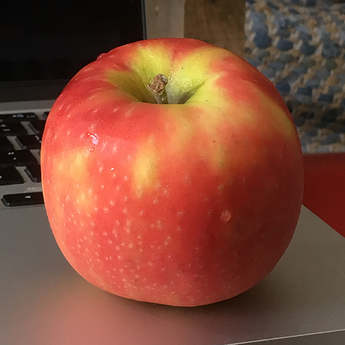 apple_reference