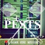 The_Pests_-_A_Damn_Fine_Mixture_CVR