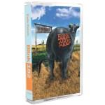 Blink 182 Dune Ranch cassette