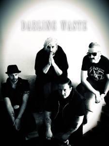 Darling Waste 2015