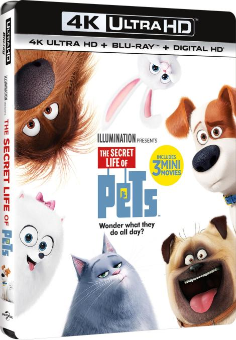 the-secret-life-of-pets-4k-ultra-hd-cover-side