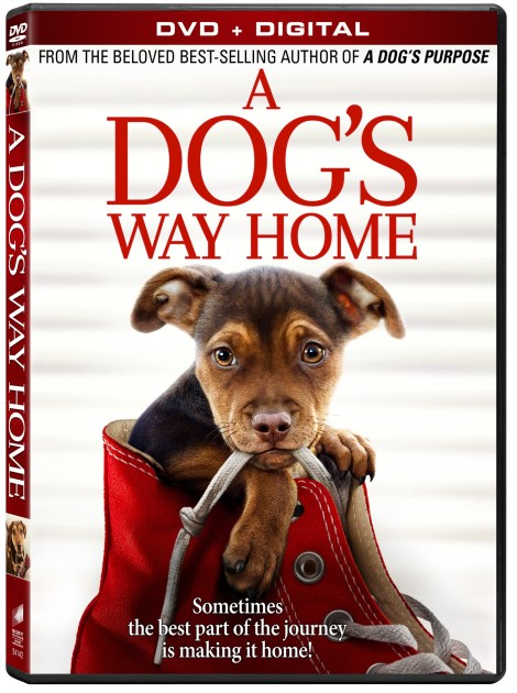 'A Dog's Way Home'; Arrives On Digital March 26 & On Blu-ray & DVD April 9, 2019 From Sony Pictures 6