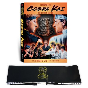Cobra Kai: Seasons 1 & 2; Arriving On Limited Collector's Edition DVD November 12, 2019 From Sony 1