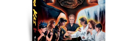 Cobra Kai: Seasons 1 & 2; Arriving On Limited Collector's Edition DVD November 12, 2019 From Sony 20