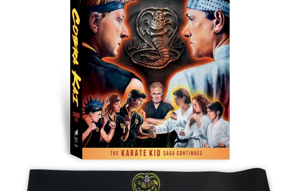 Cobra Kai: Seasons 1 & 2; Arriving On Limited Collector's Edition DVD November 12, 2019 From Sony 4