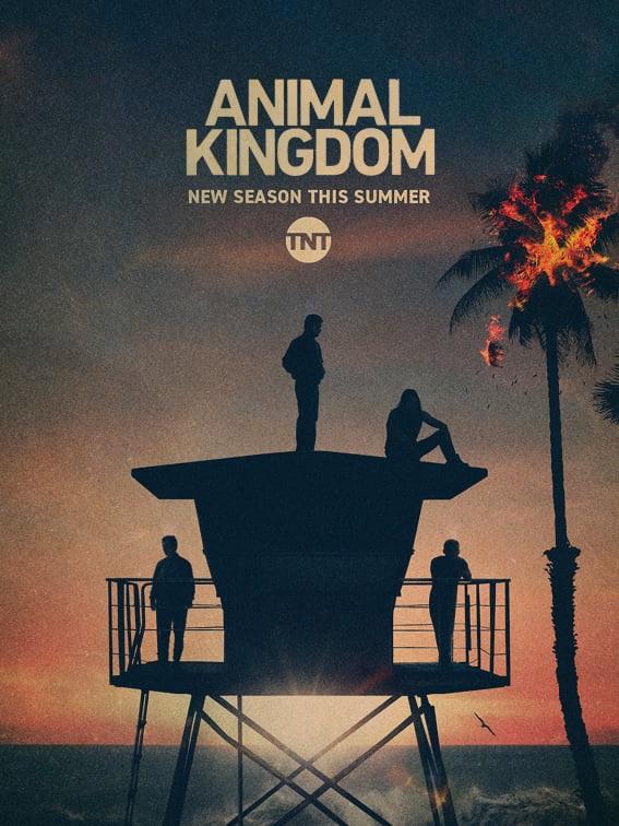 'Animal Kingdom' Renewed For Sixth & Final Season On TNT; Season 5 To Premiere This Summer 2