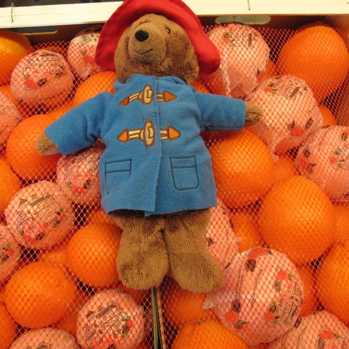 My daughter's Paddington enjoys a moment with his favourite fruit.