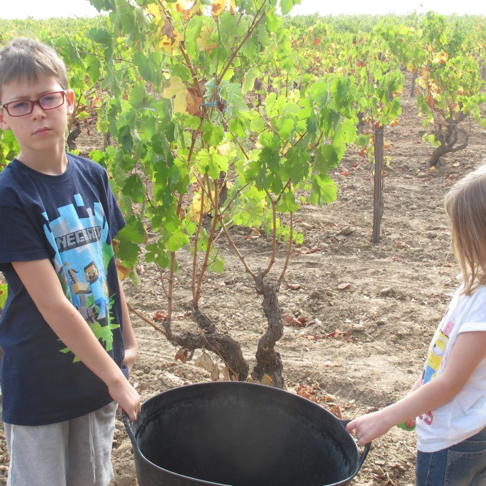 Zac and Lola hold our family puerta, large plastic bucket for putting the grapes in.